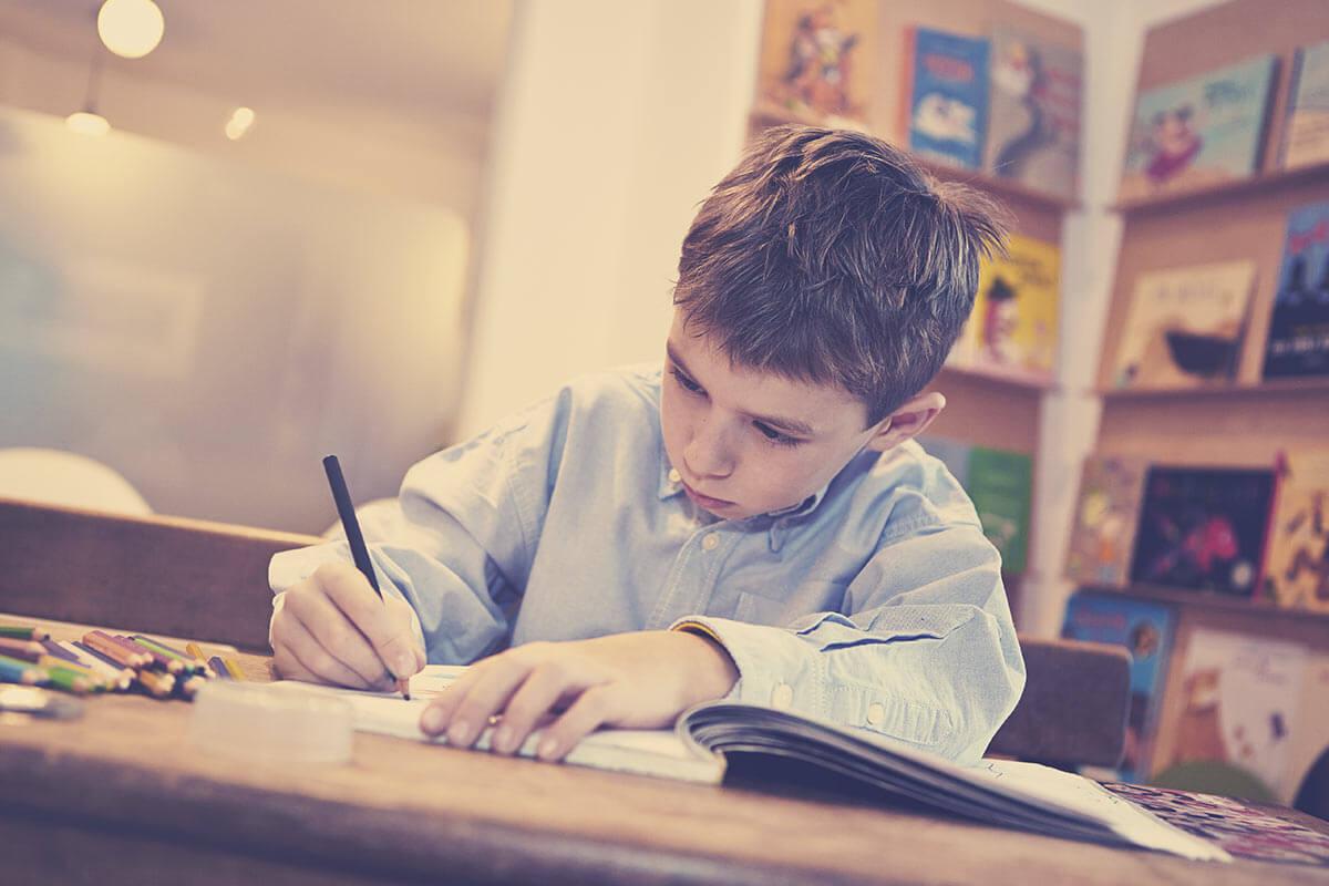 Besondere Leistungen - Vielseitige Bibliothek, bestehend aus Kinderbüchern und Erwachsenenliteratur